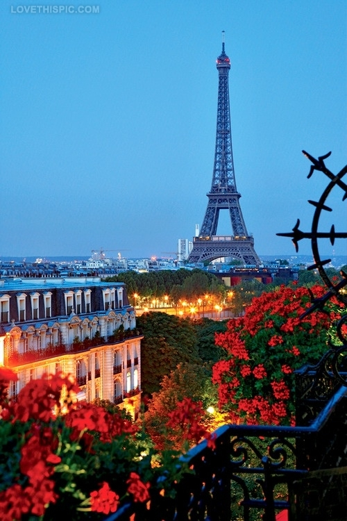 9000-Eiffel-Tower-Through-Flowers.jpg